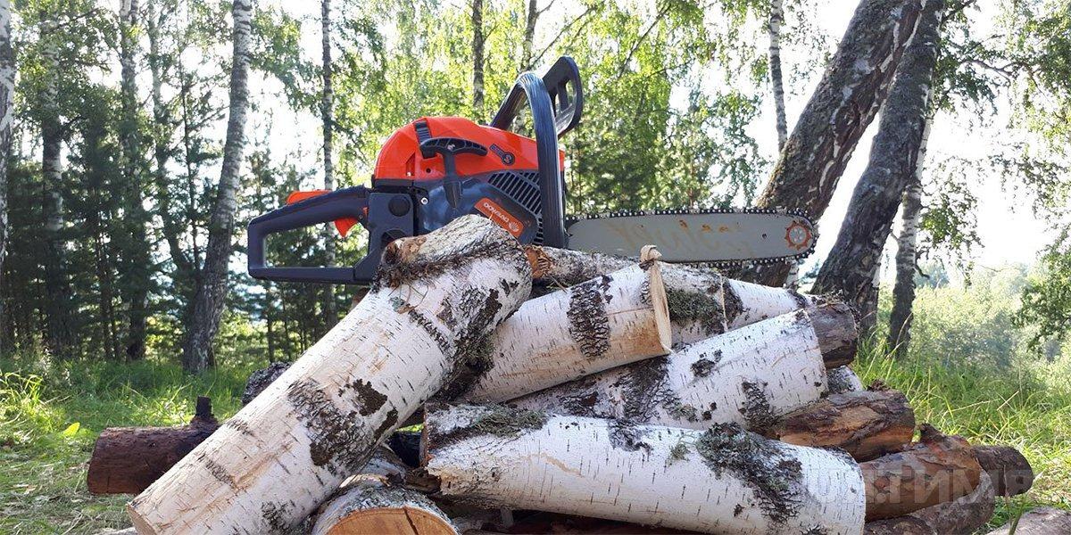 Все о заготовке дров - советы и рекомендации
